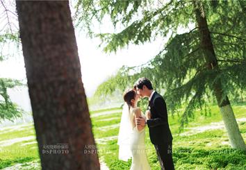 < 阳光森林 > 主题婚纱摄影